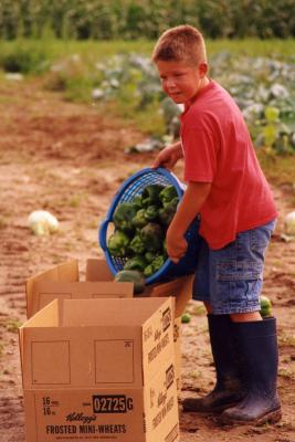 farm Boy with peppers
